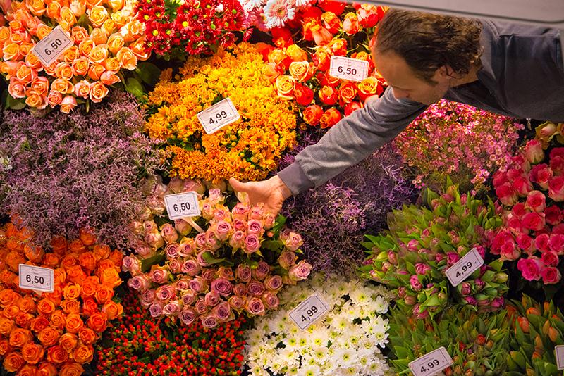 flores-1578